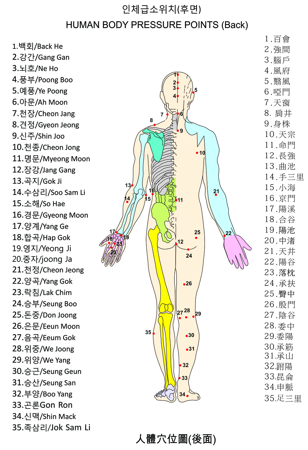 All+Human+Body+Pressure+Points All Human Body Pressure Points http ...