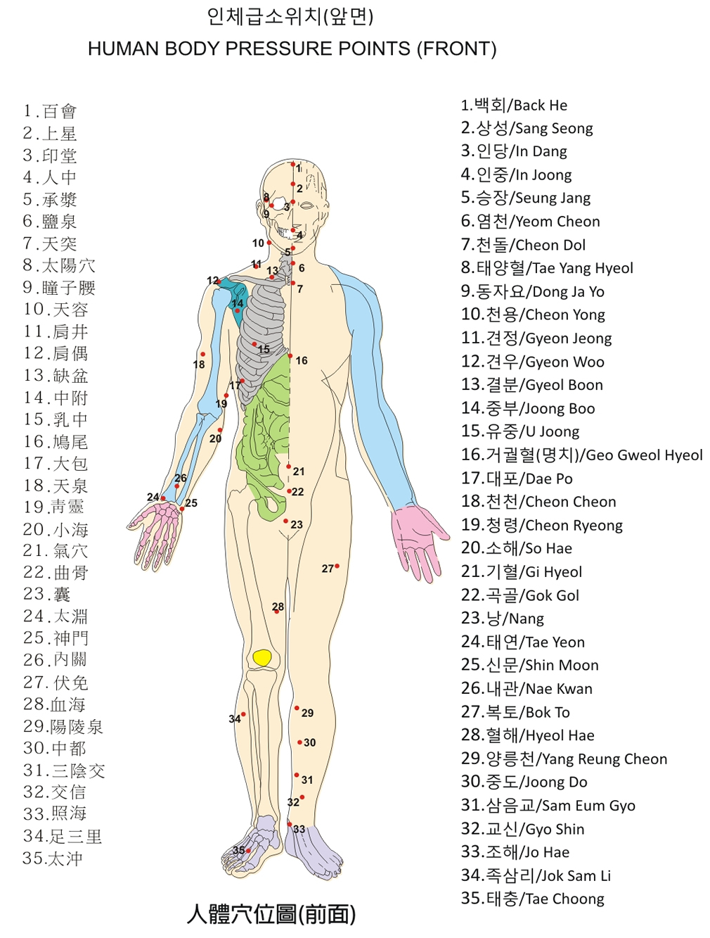Body 20front on appendicitis location diagram
